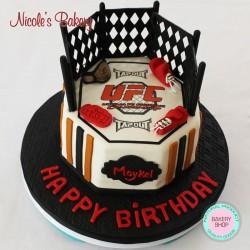 UFC Themed Cake